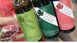 3-Rossese-di-Dolceacqua-700x397